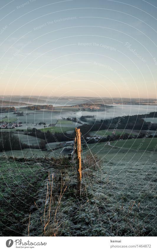 Im Licht des Morgens Umwelt Natur Landschaft Wolkenloser Himmel Sonnenaufgang Sonnenuntergang Sonnenlicht Winter Schönes Wetter Nebel Eis Frost Wiese Feld Wald