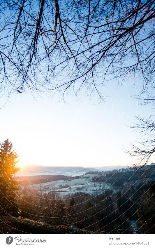 I like to rise when the sun she rises II Umwelt Natur Landschaft Pflanze Wolkenloser Himmel Sonne Sonnenaufgang Sonnenuntergang Sonnenlicht Winter