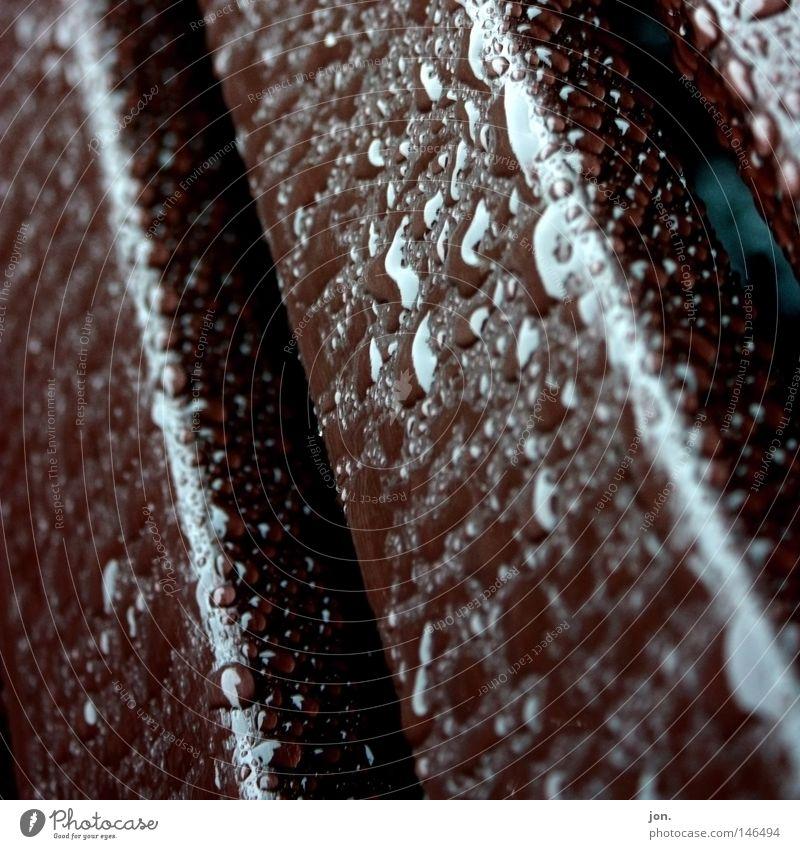 Regentropfen Gartenbank Herbst Oktober Jahreszeiten nass feucht Holz dunkel braun Makroaufnahme Nahaufnahme Möbel Wassertropfen Bank Wetter
