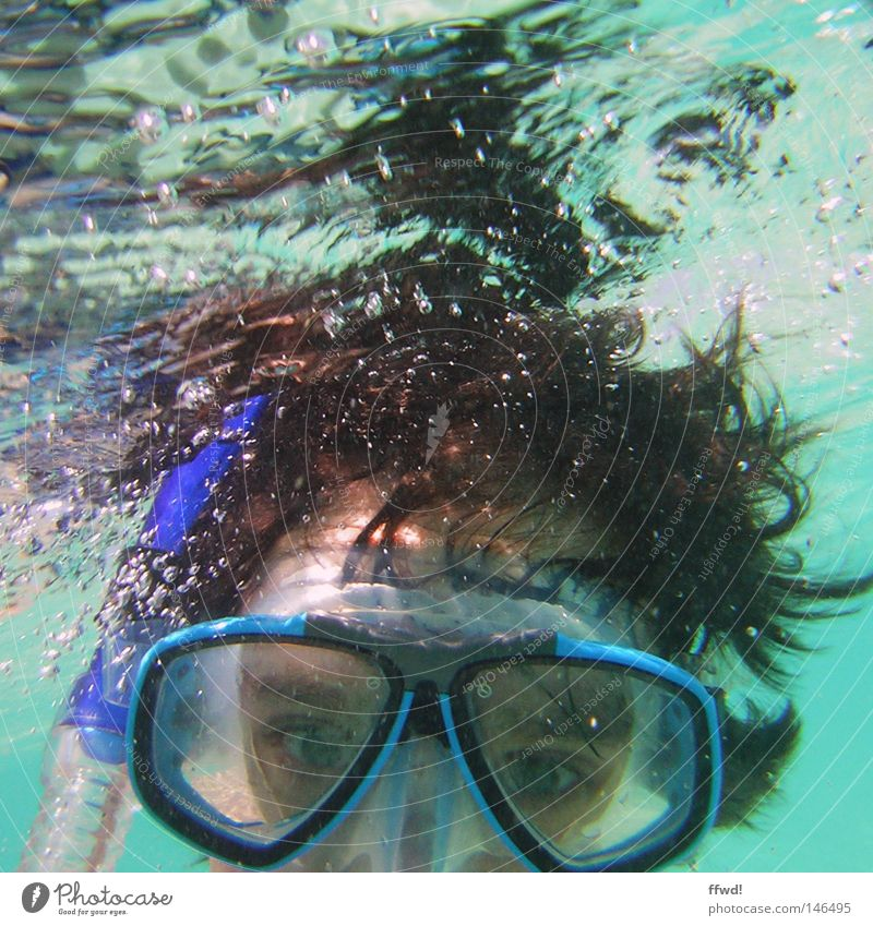 blubber Wasser Ferien & Urlaub & Reisen Meer Freude Sport See Luft Freizeit & Hobby Schwimmen & Baden Brille stoppen Maske tauchen atmen Luftblase Wasseroberfläche