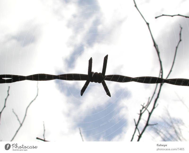 Versperrter Himmel Himmel Wolken Metall Spitze historisch Zaun Stacheldraht