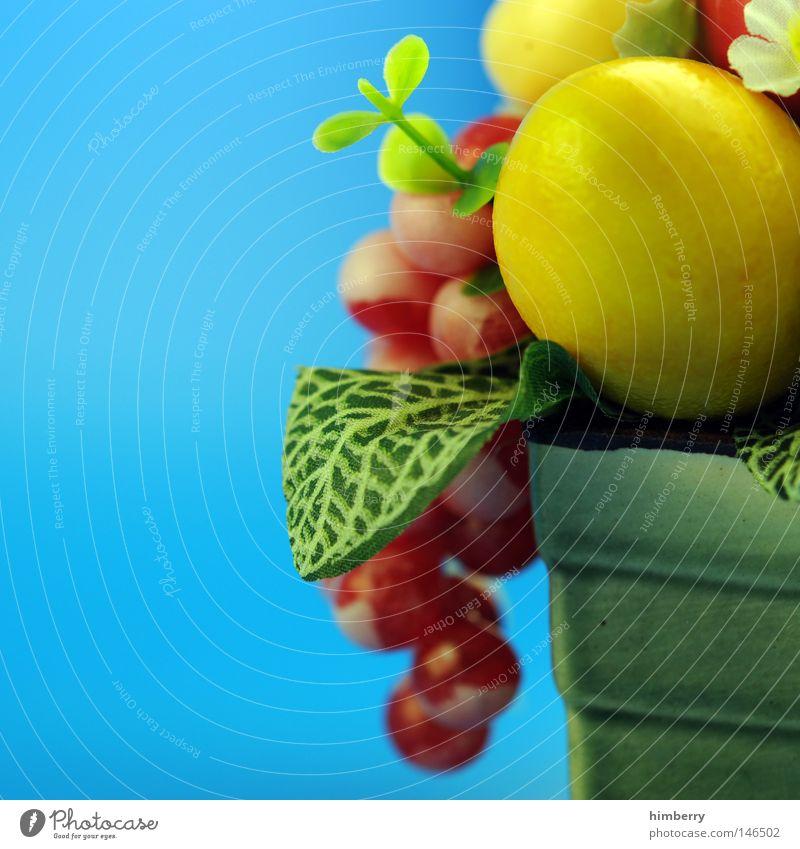 stock on Stil Kunst Design modern Frucht Dekoration & Verzierung Innenarchitektur Häusliches Leben Kitsch Apfel mehrfarbig Dinge Hotel Gastronomie Kunststoff
