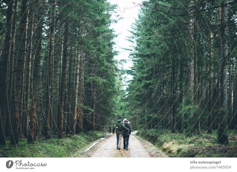 Wanderslust Mensch Natur Ferien & Urlaub & Reisen grün Erholung ruhig Winter Wald Erwachsene Umwelt Leben Herbst feminin Gesundheit Freiheit Paar