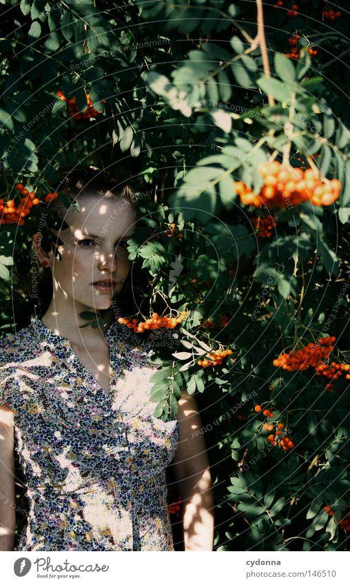 Versteckt Frau Mensch Natur schön rot Blatt feminin Leben Gefühle Stil träumen Frucht gefährlich Hoffnung bedrohlich retro