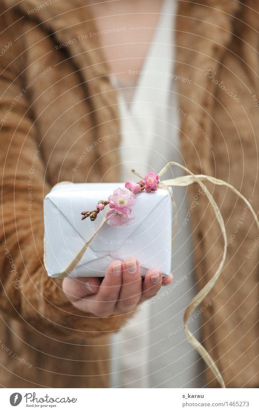 Valentinstag Lifestyle Feste & Feiern Geburtstag Mensch feminin Hand Finger Frühling Winter Baum Fell schön kuschlig Gefühle Freude Glück Fröhlichkeit