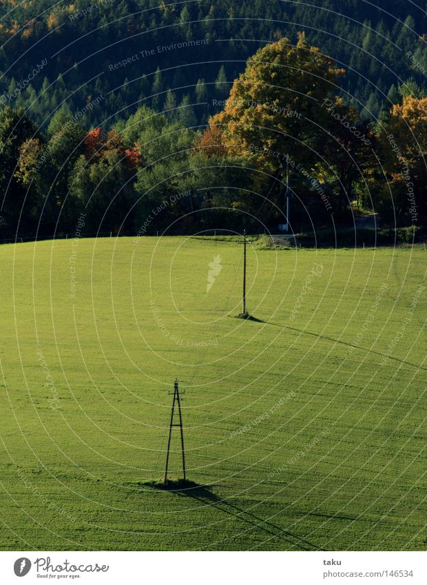 AUTUMN I Natur Baum grün Freude Farbe Herbst Wiese Ausflug Hügel Lenkdrachen Blauer Himmel Tal Sonntag Wochenende Gesprächspartner
