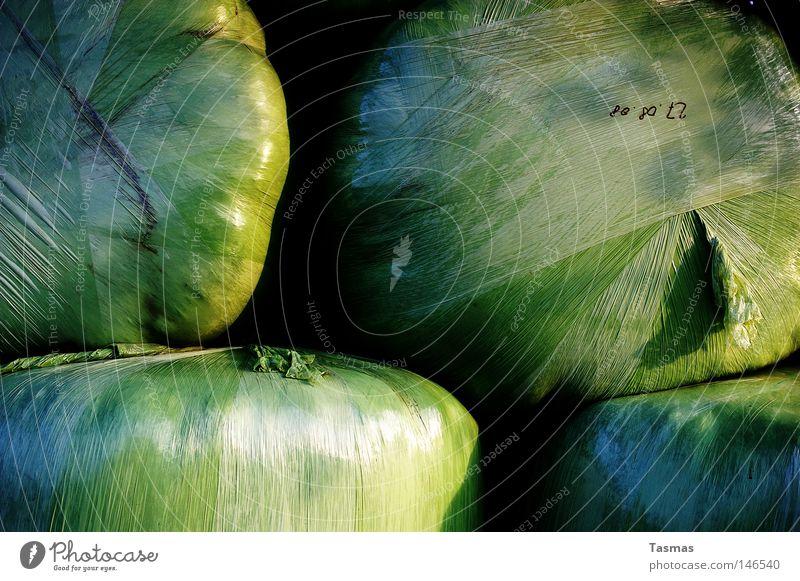 geballte Ladung grün Kugel Konzentration Kunststoff Technik & Technologie Presse drücken kleben verpackt Folie Silo eingeengt Strohballen gepresst