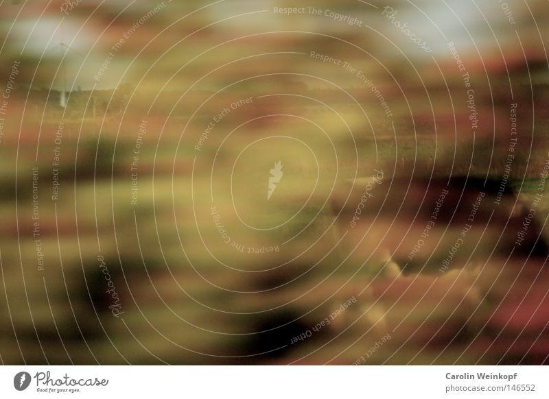 Fliegendes Windrad im Herbst mit Kuh. weiß rot Tier Landschaft Straße Herbst Deutschland braun fliegen Energie Geschwindigkeit Elektrizität Luftverkehr planen fahren Bild
