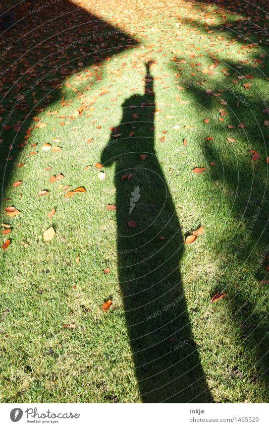 ^ Lifestyle Freude Freizeit & Hobby Haus Garten Jugendliche Erwachsene Leben Körper 1 Mensch Herbst Schönes Wetter Gras Park Dach stehen Gefühle Neugier