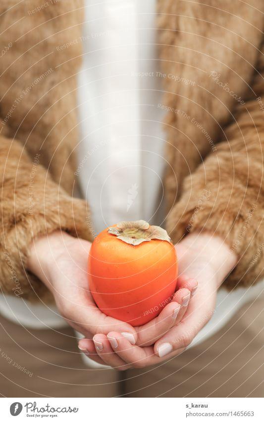 Wintervitamine Lebensmittel Frucht Ernährung Vegetarische Ernährung Gesundheit Gesunde Ernährung Frau Erwachsene Hand Jacke Fell Essen kuschlig orange kalt Kaki