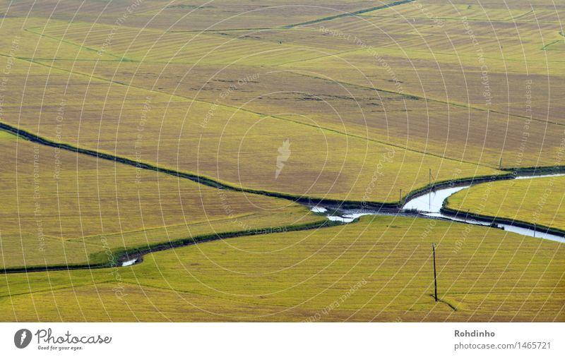 Flußfelder Natur Ferien & Urlaub & Reisen grün Sommer Wasser Landschaft Ferne gelb Tourismus Ausflug Schönes Wetter Abenteuer Fluss Landwirtschaft Getreide