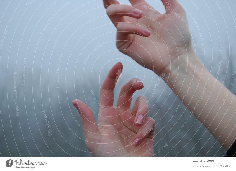 Hände im Nebel Frau Hand schön Baum dunkel Herbst Bewegung Traurigkeit ästhetisch Finger trist Trauer Gemälde 5 mystisch