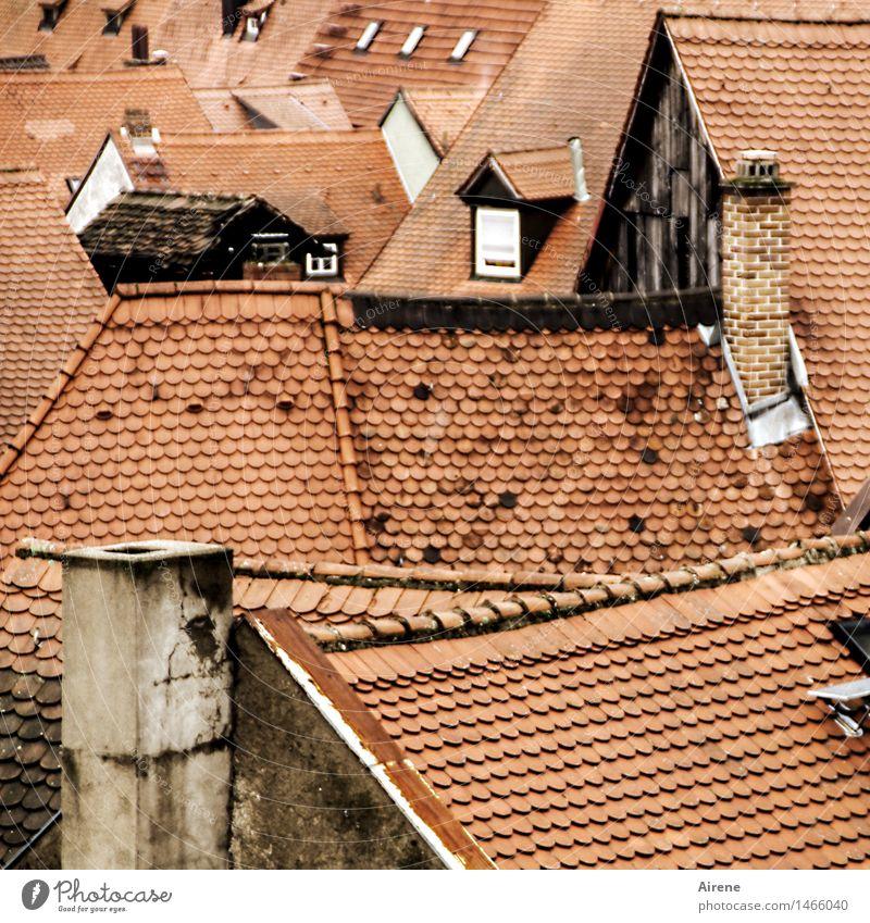 altfränkisch Bamberg Franken Stadtzentrum Altstadt Menschenleer Haus Dach Schornstein Backstein ästhetisch oben Spitze braun rot Vertrauen Sicherheit Schutz