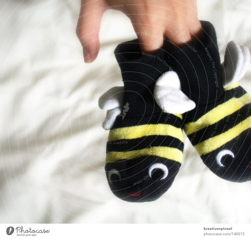 summ,summ,summ... Hand Finger Strümpfe Schuhe Biene Flügel Streifen Hummel Farbfoto niedlich Kinderbekleidung Freisteller Vor hellem Hintergrund Tierfigur