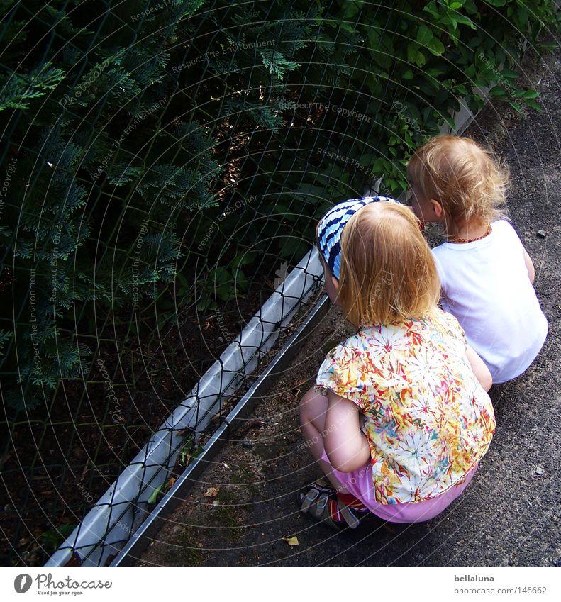 Zaungäste Kind Baum Straße Freundschaft planen Sträucher beobachten Neugier Kleinkind Aussicht hocken Maschendrahtzaun