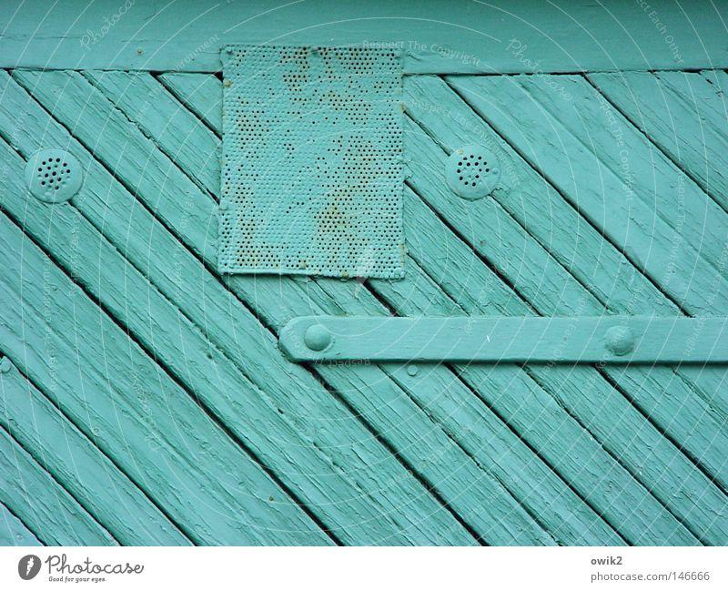 tür kis Farbe Holz Farbstoff Freizeit & Hobby Tür geschlossen trist streichen Tor Handwerk türkis Holzbrett Garage Neigung bemalt Wetterschutz