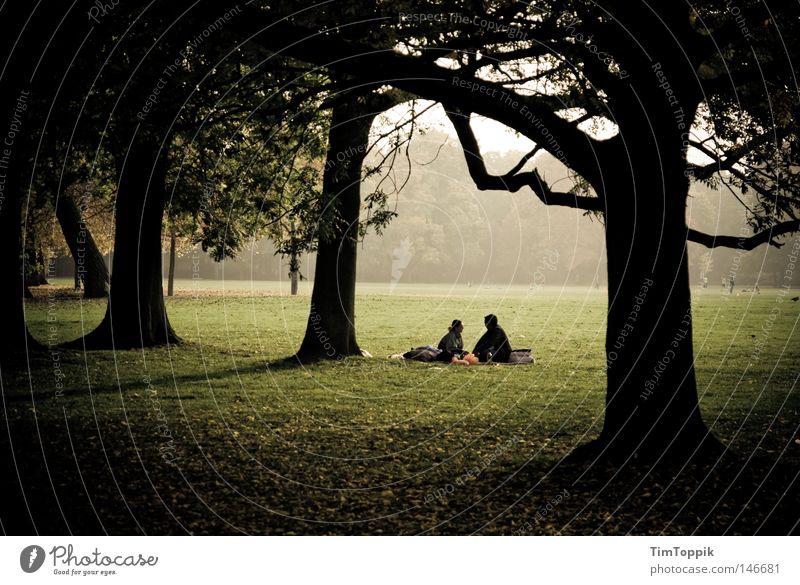 100 Jahre Photocase Herbst Park Picknick Nebel Paar Baum Wald Stadtwald Wäldchen Partnerschaft Erholung Waldlichtung schlechtes Wetter Einsamkeit sprechen Natur
