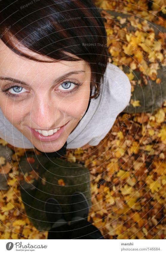hallo mein freund da oben... blau Freude Blatt Auge Herbst oben Freundschaft Perspektive unten herbstlich Schwärmerei