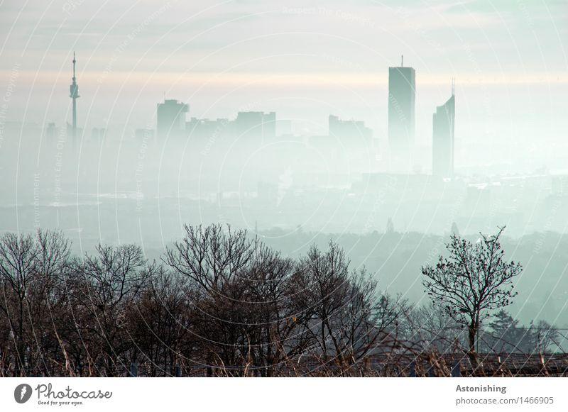 Nebel über Wien II Umwelt Natur Landschaft Pflanze Luft Himmel Horizont Herbst Wetter Baum Sträucher Wald Hügel Österreich Stadt Hauptstadt Skyline Haus