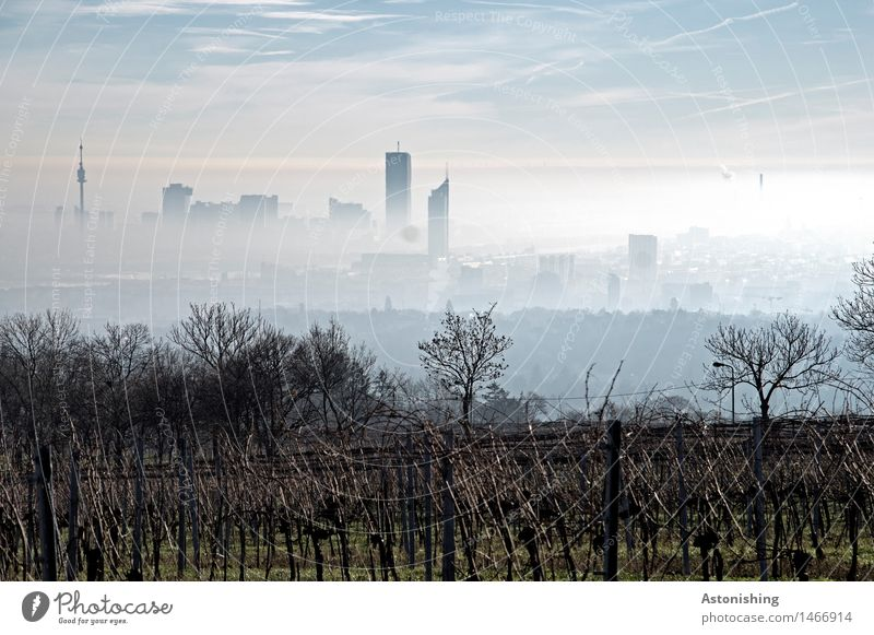 Nebel über Wien III Himmel Natur Stadt Pflanze blau Landschaft Haus dunkel Wald Umwelt Herbst Gras Gebäude grau Horizont Wetter
