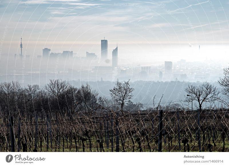 Nebel über Wien III Umwelt Natur Landschaft Pflanze Himmel Horizont Herbst Wetter Gras Sträucher Wald Hügel Österreich Stadt Hauptstadt Skyline Haus Turm
