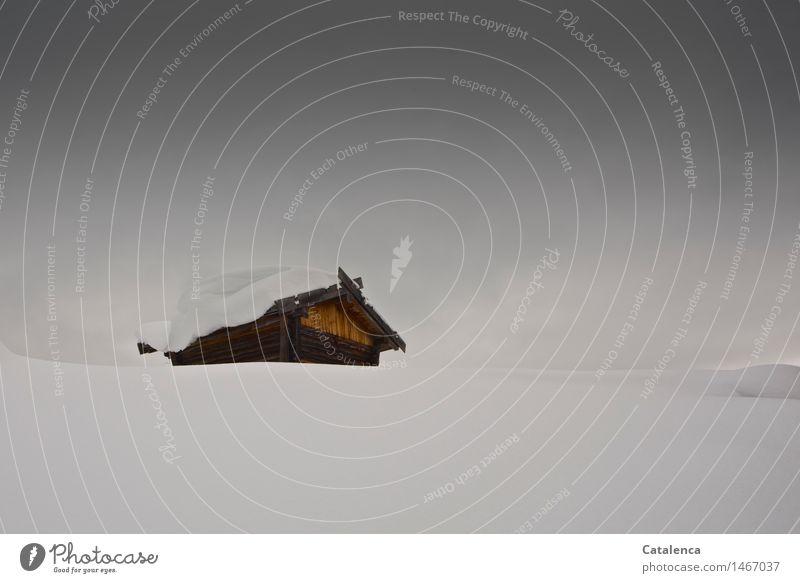 Verschneites Hüttchen Himmel Natur Ferien & Urlaub & Reisen Winter schwarz kalt Berge u. Gebirge Umwelt gelb Schnee Holz grau braun Fassade Schneefall