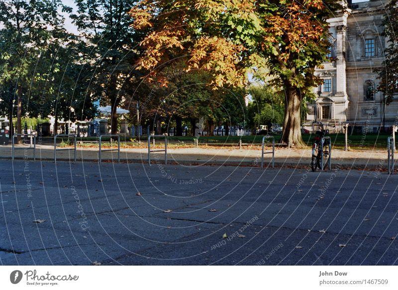 Museumsinsel Ferien & Urlaub & Reisen Sonne Baum Blatt Leben Herbst Bewegung Gras Berlin Zufriedenheit Freizeit & Hobby Fahrrad Sträucher Ausflug Platz