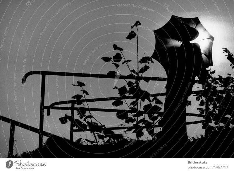 Frau mit Schirm Mensch Jugendliche weiß ruhig 18-30 Jahre schwarz Erwachsene feminin grau Kunst Stimmung elegant ästhetisch Kleid Regenschirm