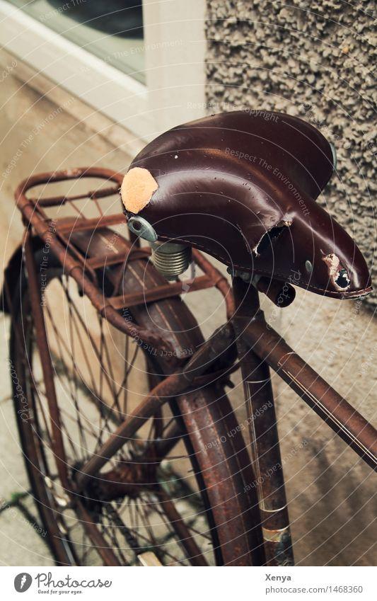 Retro Fahrrad Sattel Metall Rost retro braun Nostalgie Fahrradsattel alt Leder Außenaufnahme Menschenleer Tag Farbfoto Schwache Tiefenschärfe Gedeckte Farben
