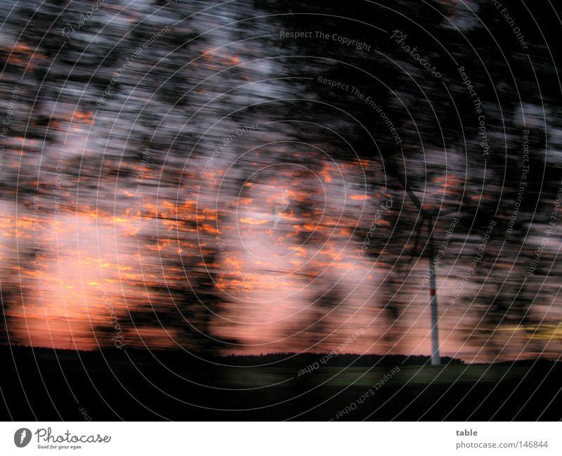 unterwegs Straße Baum Abend Herbst fahren Ausflug schwarz rot blau Bewegungsunschärfe Geschwindigkeit dunkel Freude Abenddämmerung