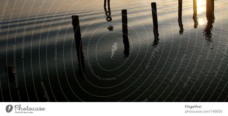 l ¦¦ l l ll l Natur Ferien & Urlaub & Reisen Wasser schön Sommer Sonne ruhig Landschaft Erholung dunkel See Beleuchtung hell Linie Wasserfahrzeug Wind