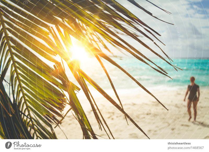 Gestrandet auf einer einsamen Insel! Mensch blau grün schön Wasser Meer Erholung Einsamkeit Blatt Strand gelb Gefühle feminin Glück gehen Sand