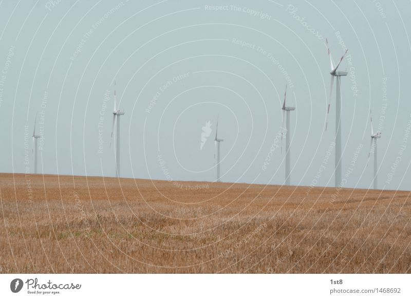 Energie Natur Landschaft Umwelt Business Feld elegant Kraft ästhetisch Erfolg Wind Technik & Technologie Zukunft Industrie Landwirtschaft Windkraftanlage