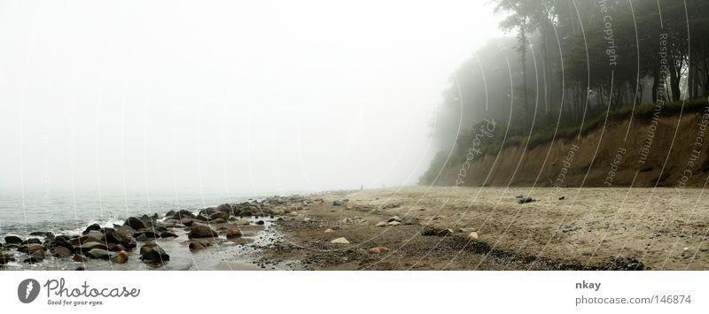 Baltic Sea Meer Strand Nebel groß Ostsee Panorama (Bildformat)