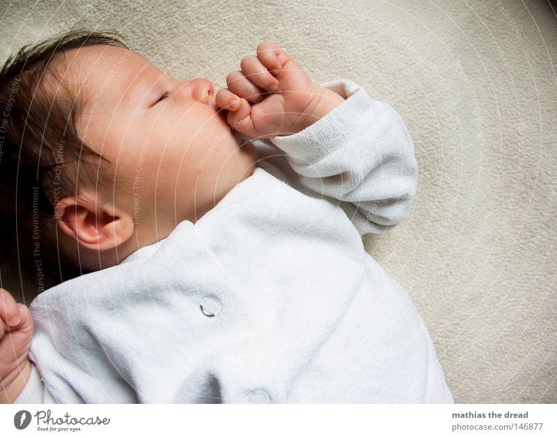 KNOCK-OUT Mädchen ruhig träumen Zufriedenheit Baby schlafen niedlich einzeln friedlich Nachkommen Kind Mensch Kindergesicht Vor hellem Hintergrund 1 Mensch