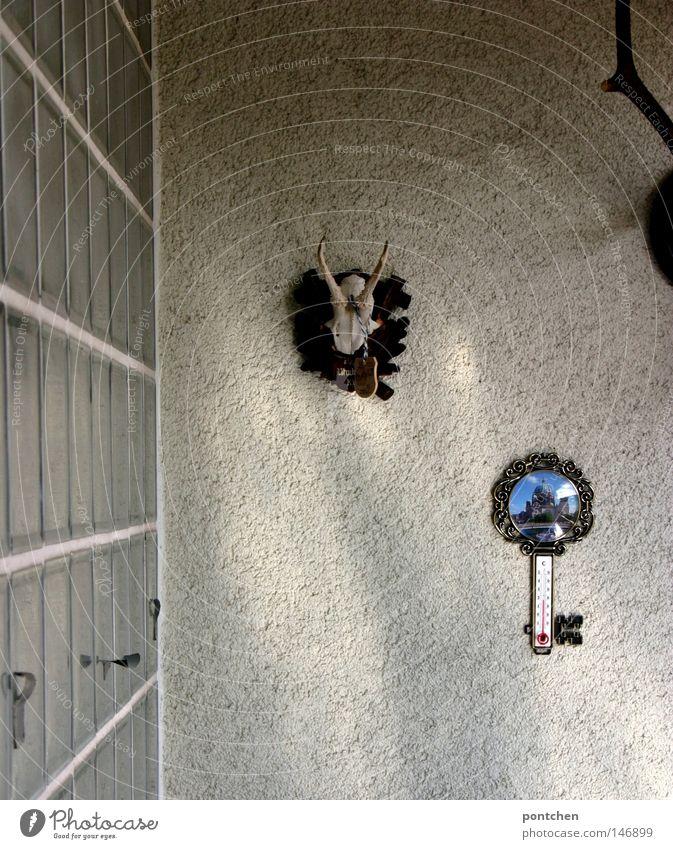 Spießige Dekoration auf einem Balkon. Hirschgeweih, thermometer. Glasbausteine. Jäger, bayern Freizeit & Hobby Jagd Sommer Dekoration & Verzierung Thermometer