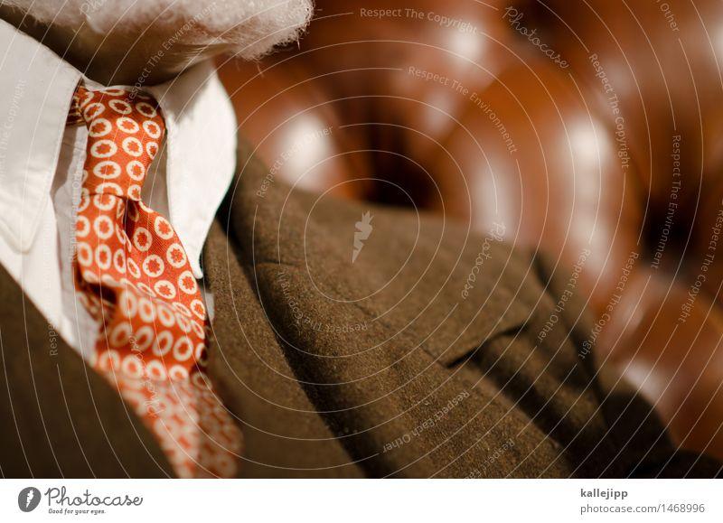 sigmund Mensch maskulin Mann Erwachsene 1 Mode Bekleidung Hemd Anzug Leder Krawatte weißhaarig Bart Vollbart Behaarung sitzen Sofa Muster Stoff Farbfoto