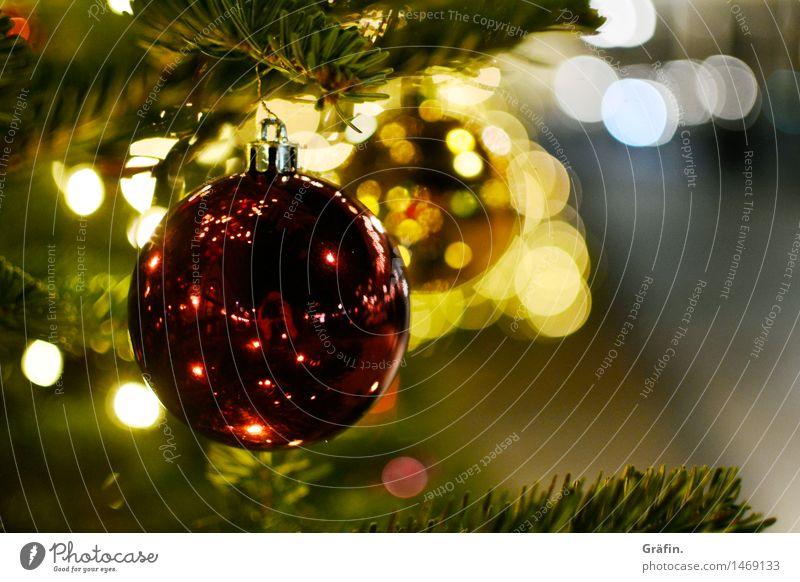 Glitzernde Weihnachten elegant Winterurlaub Weihnachten & Advent Baum Nadelbaum Dekoration & Verzierung Kitsch Krimskrams Christbaumkugel Glas glänzend gold