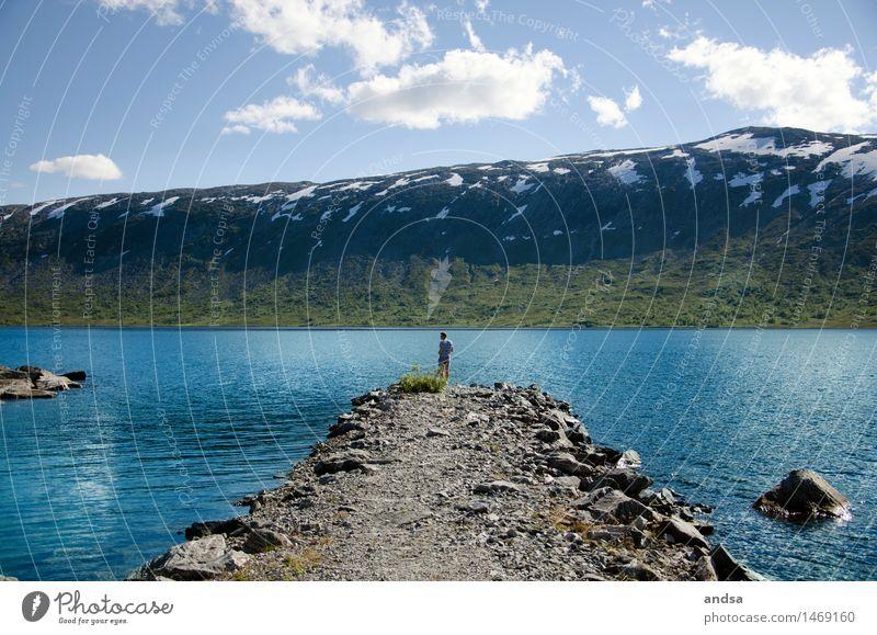 Somewhere in Norway Mensch Himmel Natur Jugendliche Mann Sommer Wasser Sonne Junger Mann Landschaft Wolken Tier 18-30 Jahre Berge u. Gebirge Erwachsene Gras