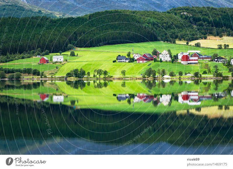 Bergsee in Norwegen Erholung Ferien & Urlaub & Reisen Berge u. Gebirge Haus Natur Landschaft Wasser See Hütte Gebäude Idylle Tourismus Gebirgssee
