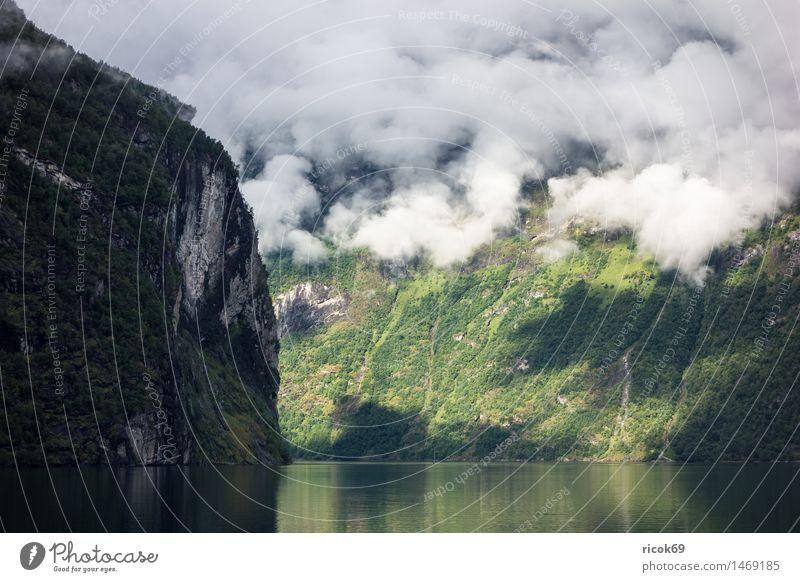 Blick auf den Geirangerfjord Erholung Ferien & Urlaub & Reisen Berge u. Gebirge Natur Landschaft Wasser Wolken Nebel Küste Fjord Idylle Klima Tourismus Norwegen
