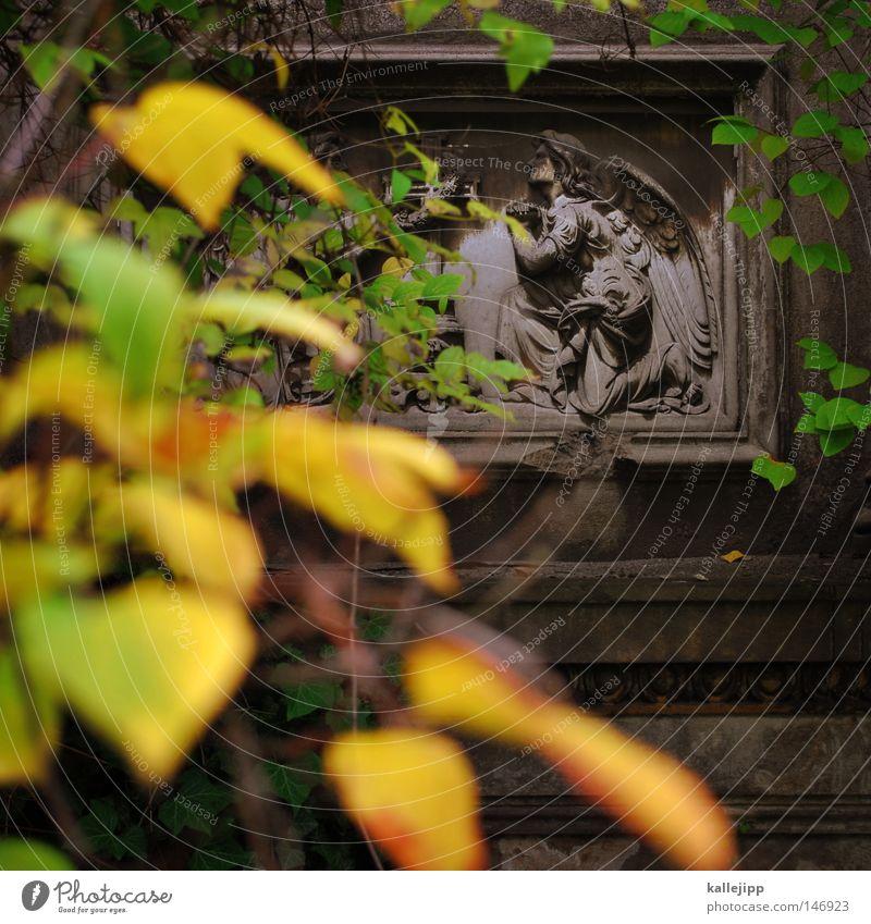 engel Grab Aufschrift Friedhof Engel Blatt Herbst Baum Verfall Tod Sensenmann Religion & Glaube Kirche Trauer Beerdigung Leben Relief Stein Erinnerung Gebet