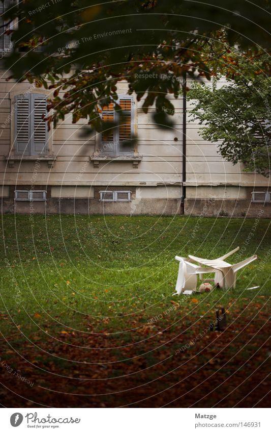Sommerende alt weiß grün Baum Blatt Haus Fenster Wiese Herbst Wärme orange liegen groß Stuhl Rasen Physik