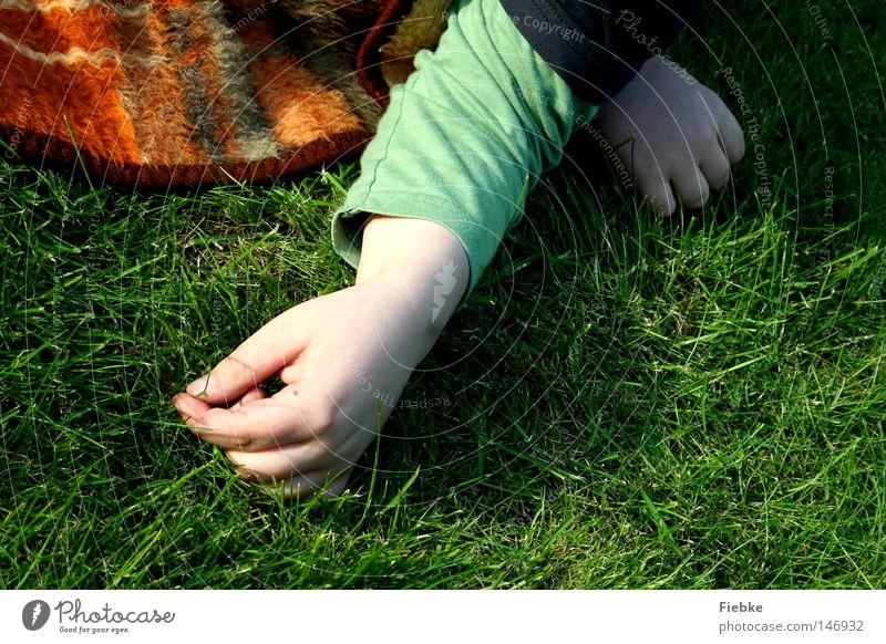 Grashalminventur Mensch Kind Hand grün Sommer ruhig Erholung Junge Wiese Wärme Arme Zeit Finger Boden
