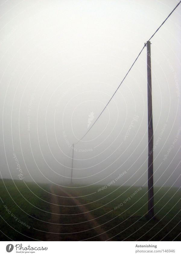 Leitung im Nebel Kabel Himmel Herbst Wetter Gras Wiese Wege & Pfade Perspektive führen Elektrizität Strommast Farbfoto Hochspannungsleitung schlechtes Wetter
