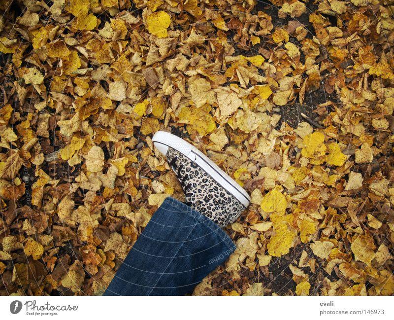 Bittersweet October Herbst Schuhe Blatt Einsamkeit fallen autumn Fuß Beine Jeanshose liegen foot leg shoe trousers leaf leaves