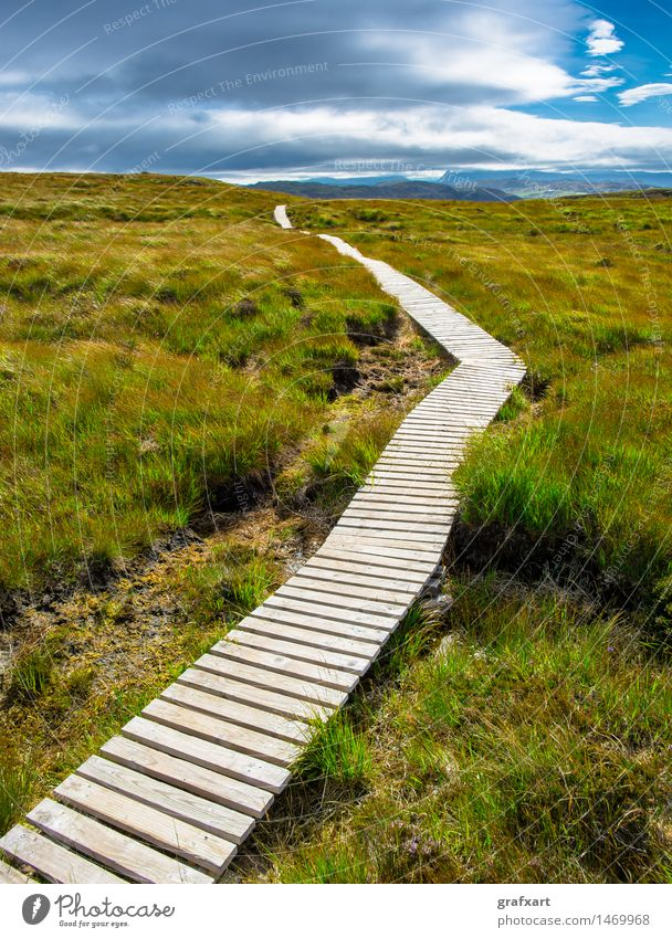 Schmaler Holzpfad durch Heidelandschaft in Schottland Himmel Natur Ferien & Urlaub & Reisen Sommer Landschaft Einsamkeit Wolken Ferne Umwelt Wiese Wege & Pfade