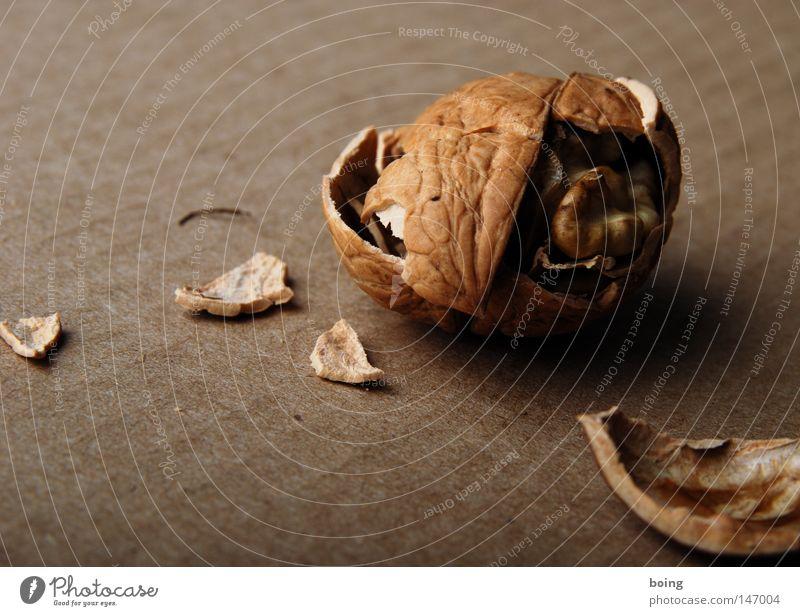 ´ne harte Nuss geknackt Walnuss Nussschale Kerne gebrochen Bruch Bauschutt Nussknacker Karton Walnussöl Weihnachtsdekoration Ernährung Snack