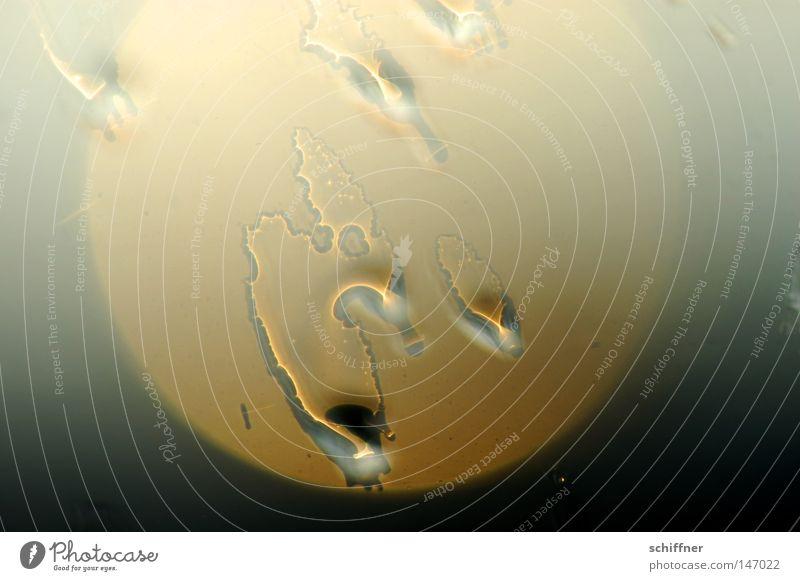 Spermiensonne Sonne Reflexion & Spiegelung Fensterscheibe Regen Wassertropfen Tropfen Trauer Tränen Tod glänzend schimmern Wetter Meteorologie unbeständig