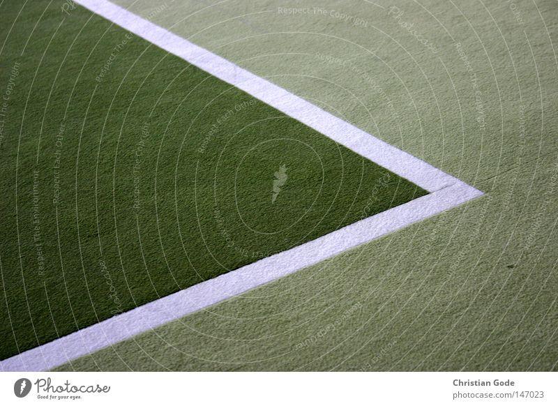 Ecke Po Pecke weiß grün Winter Sport Spielen springen Linie Freizeit & Hobby Geschwindigkeit Erfolg Ball Netz diagonal Halle Tennis Teppich